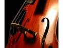 voceapacientului. Muzica si Memorie