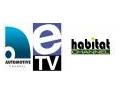 televiziune. UN NOU TRUST DE TELEVIZIUNE IN ROMANIA