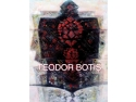 album. Lansare Album de arta TEODOR BOTIS