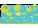 Grafic_domenii de interes_studii in strainatate@RIUF