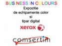 felicitari craciun business. BUSINESS IN COLOURS