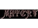 Porti fier forjat Onesti- lucrari impresionante la preturi exceptionale rusalii 2014