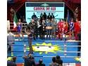 Anca Florea. Gala de Box Careul de Asi - Noaptea Campionilor Romani