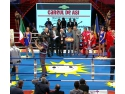 contact manager. Gala de Box Careul de Asi - Noaptea Campionilor Romani