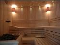 curatare cu abur uscat. Sauna uscata standard