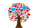Seminar Audit si Strategie de Marketing - 30% reducere pentru doamne - 14 martie