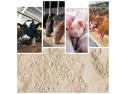 vaci. Bentonită Sodică Premium: ideală ca liant pentru furaje & aditiv în hrana animalelor (vite de lapte, porci, găini)