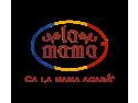 100 localitati. Logo Aniversar La Mama