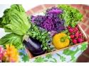 efamilia.ro - dieta si nutritie