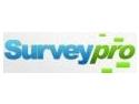 chestionare. Chestionare online la preturi accesibile folosind SurveyPro.ro