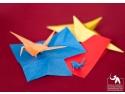 Sony Alpha 77. Ateliere de Origami pentru copii cu vârste de la 7 la ... 77 ani