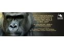 Ambasada Germaniei. Este conservarea biodiversitatii o problema reala a sec. XXI? Gorila din Bazinul Congo - studiu de caz