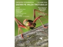 """cazare Valea Prahovei. Expozitia de fotografie """"Safari pe Valea Trotusului"""""""