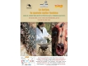 La Antipa, in spatele usilor inchise - Rolul insectelor în investigaţia criminalistică