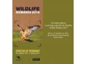 """expozitie cu sunet. Muzeul Național de Istorie Naturală """"Grigore Antipa"""" și """"LaPrintărie"""" vă invită la vernisajul expoziției de fotografie  Wildlife România 2016"""