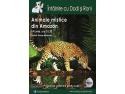 ÎNTÂLNIRE CU DODI ȘI RONI: ANIMALE MISTICE DIN AMAZON