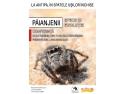 Păianjenii: specii și evoluție