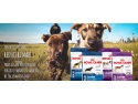 royal tv. royal canin romania