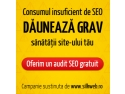 eveniment organizat de silkweb. audit seo