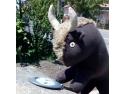muntii tarcului. Artefaur elibereaza zimbrii!