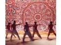 auditor intern Sibiu. Artisti din Comunitatea franceza Valonia-Bruxelles la Festivalul International de Teatru de la Sibiu