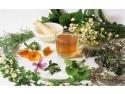 Beneficiile aduse de medicina naturista organismului uman