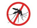 plase insecte. www.reparatiitermopanepvc.ro