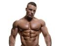 Masa Musculara Shopbuilder