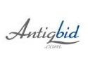 portal licitatii online. A fost lansat AntiqBid.com un site de licitatii online dedicat colectionarilor si anticarilor
