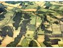 targ pentru fermieri. Parcele vazute din satelit