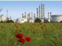 Complexul industrial BASF de pe insula Friesenheim