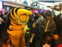 GARFIELD ADORAT IN WEEKEND DE SUTE DE FANI DIN BUCURESTI SI PITESTI