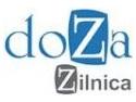 Enciclopedie zilnica de sensuri. Doza Zilnica ofera acces on-line gratuit la primele doua romane in varianta integrala
