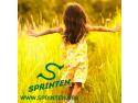 sprinten. Proiectul SPRINTEN