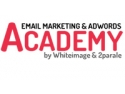 prin email. Cele mai eficiente strategii de promovare online prin Email Marketing si Google AdWords