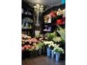 litigii intre comercianti. O florarie intre flori!