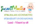 Preturi negociabile pentru tot ce aveti nevoie pentru copii, de la carucioare la tobogane – Jucariimagice.ro