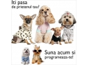 pet shop online. www.raymonds.ro