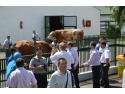 material bumbac. SEMTEST-BVN MUREŞ exportă MSC în China