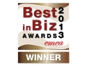 insoft development consulting. Best in Biz Awards