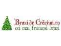 BrazideCraciun.ro s-a relansat!