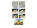 marfa urgenta. UNTRR solicită urgentarea lucrărilor și deschiderea traficului pentru vehiculele comerciale pe DN7 între localitățile Pitești – Râmnicu Vâlcea