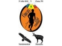Concurs de alergare montană Ciucaş Trail Running