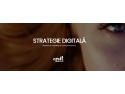 Strategie digitală cu Inteligență Artificială activitati 2012