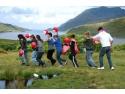 young Goldfish. Stagii europene de voluntariat gratuite pentru tinerii romani