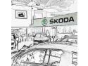 Metrotehnica este acum si dealer ŠKODA