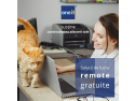 remote. Remote work - solutii gratuite - One-IT