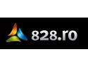 Companie suedeză specializată în motoare de căutare investeste in Romania si lansează 828.ro – noul motor de căutare a companiilor românești