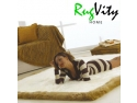 promotionale. covoare rugvity