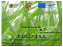 Romania Press. Press release - D.I.A.L.O.G.U.E